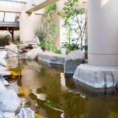 東京ドーム天然温泉 スパラクーア